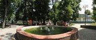 В парке Шевченко лучше, чем в Александрие